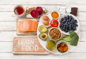 memory and brain food